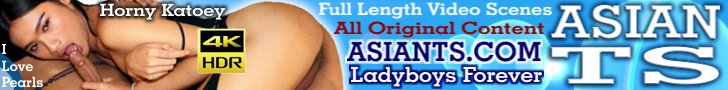 Huge Collection of Sexy Asian Transsexuals!!