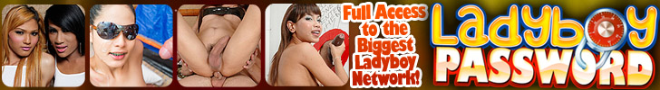 So many Hot Hung Ladyboys to believe!