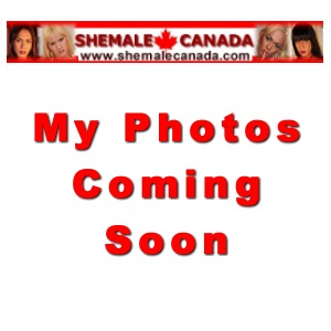 Winnipeg shemale escorts